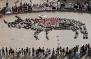 Закон за забрана на бикоборството в Каталуня, Испания
